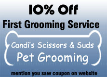 $5 Off, Dog Grooming in Lake Hopatcong, New Jersey